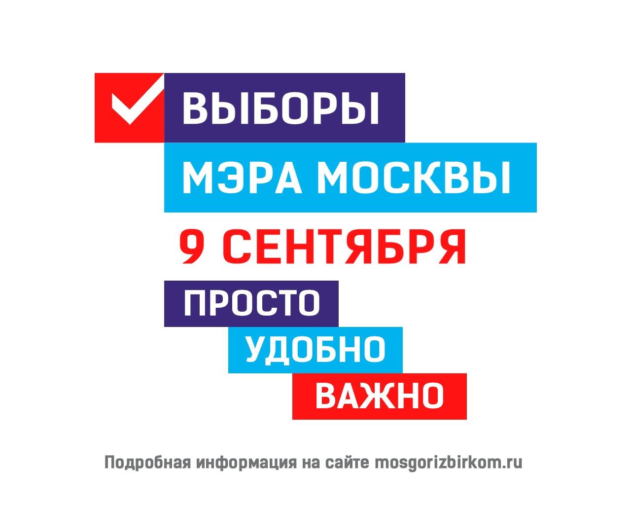 Проголосовать на выборах Мэра Москвы